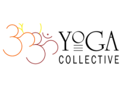 Master Teacher, Todd Norian hosted by Yoga Collective